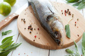 Raw zander and spices on a cutting board, fish — Stock Photo