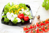 Salad with fresh vegetables and quail eggs on a square plate — Stock Photo