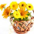 Wicker basket with yellow flowers - marigolds — Stock Photo