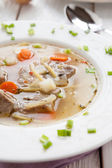 Nutritious meat soup with macaroni — Stock Photo