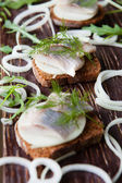 Fillet of herring on rye bread and onion rings — Stock Photo