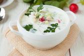çorba, yoğurt ve sebze, okroshka rusya — Stok fotoğraf
