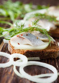 Herring fillet on rye bread and onion rings — Stock Photo
