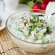 Traditional Russian summer soup - Stock Photo