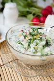 Traditional Russian summer soup — Stock Photo