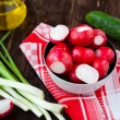 Fresh spring vegetables, radishes and onions — Stock Photo #24525633