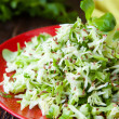 Stock Photo: Fresh coleslaw and chopped herbs