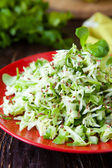 Fresh coleslaw and chopped herbs — Stock Photo