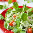 Fresh salad with lettuce and other vegetables — Stock Photo