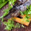 Uncooked fish on board, raw pike — Stock Photo