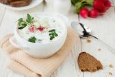 Cold summer soup with yogurt, Russian Okroshka — Stock Photo