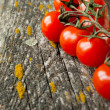 Cherry tomatoes on the board — Stock Photo