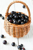 Black currant in a basket — Stock Photo