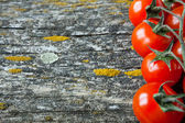 Tomato on the old board — Stock Photo