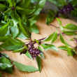 Stock Photo: Flowering sprigs of basil on cutting board