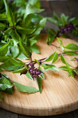 Flowering sprigs of basil on a cutting board — Stock Photo