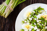 Salad with egg and wild garlic, Ramson — Foto Stock