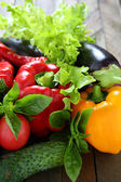 Harvest fresh vegetables and herbs — Stock Photo