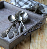 Cupro-nickel spoons in a gray tray — Stock Photo