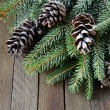 Spruce twigs and cones covered with artificial snow — Stockfoto