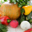 Collection of home-grown vegetables — ストック写真
