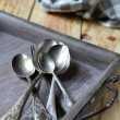 The old cutlery on the tray — Stock Photo #33280457