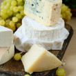 Different kinds of cheese on a background of grape — Stock Photo #34120305