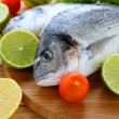 Two fresh dorado fish on board — Stock Photo