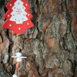 Wooden Christmas decorations — Stock Photo #34920935