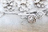 Winter background with pine cones, decor — Stock Photo