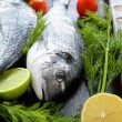 Raw sea bream on a baking — Stock Photo