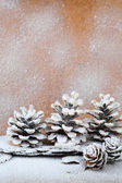 Background with snow-covered pine cones — 图库照片