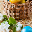 easter eggs in a basket — Stock Photo #38326279