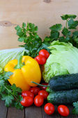 Vegetable crop - cabbage, peppers, herbs — Stock Photo