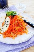 Salada de cenoura fresca — Fotografia Stock