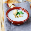 Fragrant mushroom soup — Stock Photo #41973913