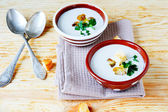 Two bowls of fragrant mushroom soup — Stock Photo