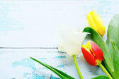 Spring flowers - tulips on old boards — Stock Photo