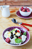 Fresh cheese with berries in a bowl — Foto de Stock