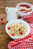 Oatmeal with cranberries — Photo