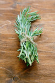 Sprig of rosemary — 图库照片
