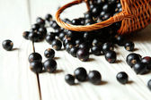 Black currant on a white table — Stock Photo