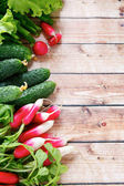 Cucumbers and radishes on the boards — Stock Photo