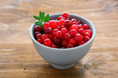 Cranberries in a small bowl — Stock Photo