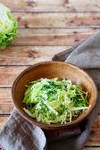 Crispy salad from fresh cabbage — Stock Photo