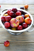 Plum and cherry plum in drops of water — Stock Photo