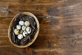 Small quail eggs in a basket, top view — Stock Photo