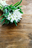 Spring snowdrops on wooden background — Stock Photo