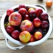 Fresh and juicy plums in colander — Stock Photo #51176175