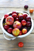 Fresh and juicy plums in colander — Stok fotoğraf